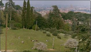 Tozzoni park