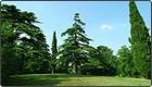 Parco urbano didattico di Montebello